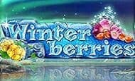 uk online slots such as Winterberries