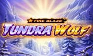 uk online slots such as Tundra Wolf