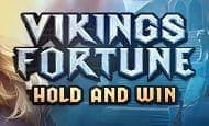 uk online slots such as Vikings Fortune: Hold and Win