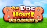 uk online slots such as The Dog House Megaways