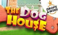 UK Online Slots Such As The Dog House
