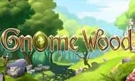 UK Online Slots Such As Gnome Wood