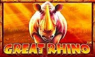 UK Online Slots Such As Great Rhino