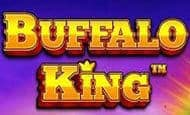 uk online slots such as Buffalo King