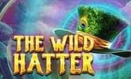 uk online slots such as Wild Hatter