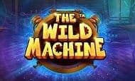 UK Online Slots Such As The Wild Machine