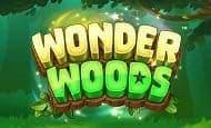UK Online Slots Such As Wonder Woods