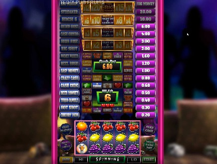 Ted Pub Fruits Series slot
