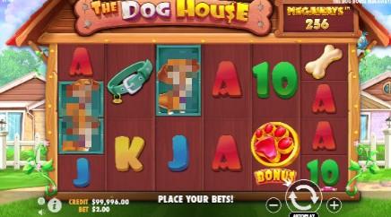 The Dog House Megaways slot